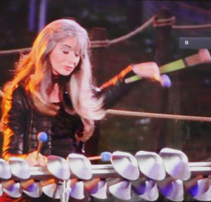 Evelyn Glennie - Aluphone